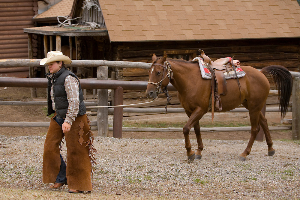 United States, Montana, Livingston, cowgirl leading horse in corral