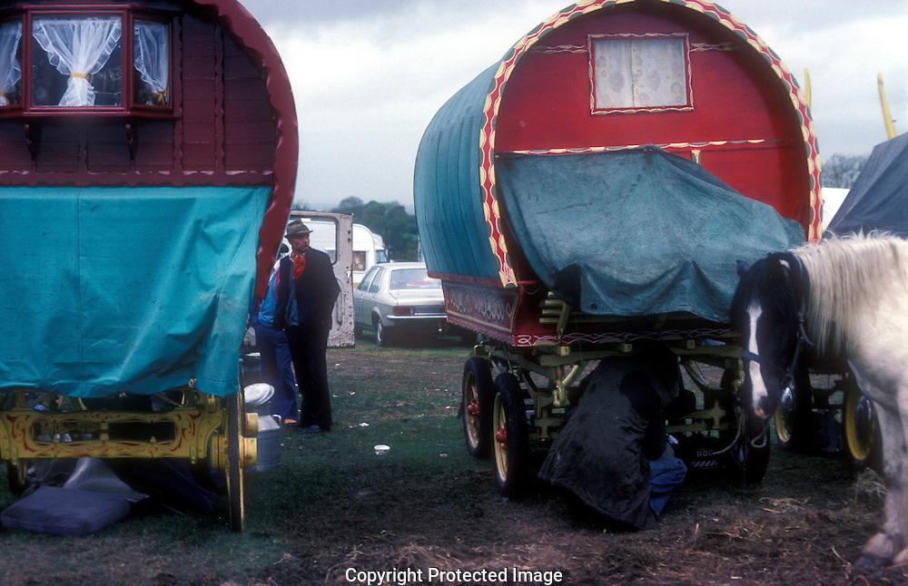Bow shaped Gypsy caravans at Appleby Fair gathering,  England