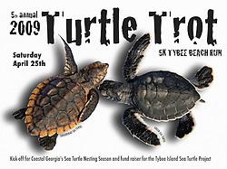 Tybee Island Sea Turtle Project, advertising poster use, 2009, Image ID: Green-Sea-Turtle-0072