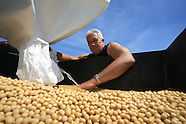 01: FARMS PREPPING SOYBEANS