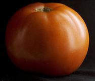 Red tomato on black