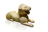 Phrygian ivory statuette carved as a roaring lion lying down from a table base decoration. From Gordion. Phrygian Collection, 8th-7th century BC - Museum of Anatolian Civilisations Ankara. Turkey. Against a white background .<br /> <br /> If you prefer you can also buy from our ALAMY PHOTO LIBRARY  Collection visit : https://www.alamy.com/portfolio/paul-williams-funkystock/phrygian-antiquities.html  - Type into the LOWER SEARCH WITHIN GALLERY box to refine search by adding background colour, place, museum etc<br /> <br /> Visit our CLASSICAL WORLD PHOTO COLLECTIONS for more photos to download or buy as wall art prints https://funkystock.photoshelter.com/gallery-collection/Classical-Era-Historic-Sites-Archaeological-Sites-Pictures-Images/C0000g4bSGiDL9rw