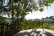A viewing platform overlooking a tropical garden and St. George's harbour in Hyde Park Garden, St. George's, Grenada, West Indies, The Caribbean