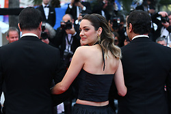 Daniel Auteuil, Fanny Ardant, Nicolas Bedos, Guillaume Canet, Denis Podalydes, Doria Tillier and Michael Cohen attend the screening of 'La Belle Epoque' during the 72nd annual Cannes Film Festival in Cannes. 21 May 2019 Pictured: Marion Cotillard, Jean Dujardin and Gilles Lellouche attend the screening of 'La Belle Epoque' during the 72nd annual Cannes Film Festival in Cannes, France, on May 20, 2019. Photo credit: Favier/ELIOTPRESS / MEGA TheMegaAgency.com +1 888 505 6342