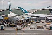 A Cathay Pacific aeroplane loading up with packages at Hong Kong International Airport in Chek Lap Kok, Hong Kong. It first opened in 1998 and now connects to over 220 destinations worldwide.