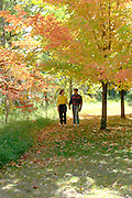 Couple age 21 strolling through the woods in Northern Minnesota.  Clitherall Minnesota USA