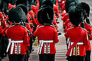 Guardsmen at Trooping the Colour, London, United KIngdom.