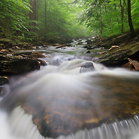 Spring fog lingers in Ganoga Glen over the rushing waters of Kitchen Creek in Ricketts Glen State Park, Pennsylvania.