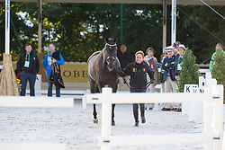 Claudia Fassaert, (BEL), Donnerfee - Horse Inspection Dressage - Alltech FEI World Equestrian Games™ 2014 - Normandy, France.<br /> © Hippo Foto Team - Leanjo de Koster<br /> 25/06/14