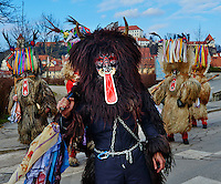 Slovenie, region de Basse-Styrie, Ptuj, ville sur les rives de la Drava (Drave), jour de carnaval, les Kurent sont les personnages principaux, vêtus d'une peau de mouton, ils chassent symboliquement l'hiver // Slovenia, Lower Styria Region, Ptuj, town on the Drava River banks, carnival. The Kurent are the main figure wears a massive sheepskin garment and a chain with huge bells around its waist