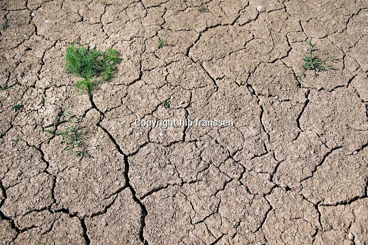 Nederland, Oeffelt, 28-5-2020 Opgedroogde en gebarsten klei, grond. Door de aanhoudende en langdurige droogte en regentekort dreigt er nu alweer een watertekort voor de landbouw . Foto: Flip Franssen