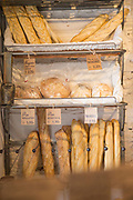Bakery window display with bread, Cadiz, Andalusia, Spain