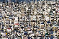 Marina @ East Basin, Harbor Island