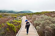 Young boy walking on boardwalk, Elfin Forest, Baywood Park, San Luis Obispos County, California, USA (MR)