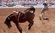 24 FEBRUARY 2002, TUCSON, ARIZONA, USA: A competitor is bucked off a saddle bronc at the Fiesta de los Vaqueros Rodeo in Tucson, Az, Sunday, Feb. 24, 2002. The Fiesta de los Vaqueros Rodeo has been held for 77 years and is one of the largest professional rodeos in the US..PHOTO BY JACK KURTZ