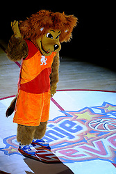 14-08-2010 BASKETBAL: NEDERLAND - ITALIE: ALMERE<br /> The Dutch ladies have their European Championship qualifier against Italy lost 60-70 / Dunker is always an unpredictable mascot of the Dutch Basketball League<br /> ©2010-WWW.FOTOHOOGENDOORN.NL