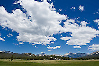 Summer day, Tuolumne Meadows, Yosemite national park, California