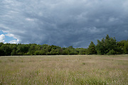 Steel coloured grey skies over trees and landscape on the western edge of Warwickshire near the border with Worcestershire on 20th June 2020 in Studley, United Kingdom.