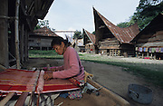 Batak woman weaver, weaving traditional cloths with her home behind, in a small village..Batak Indigenous Christian people living on Samosir Island and nearby Lake Toba in Indonesia. There are some 6 million Christian Batak in Indonesia, the world's largest Muslim country of 237 million people, which has more Muslims than any other in the world. Though it has a long history of religious tolerance, a small extremist fringe of Muslims have been more vocal and violent towards Christians in recent years. ..Batak religion is found among the Batak societies around Lake Toba in north Sumatra. It is ethnically diverse, syncretic, liable to change, and linked with village organisations and the monotheistic Indonesian culture. Toba Batak houses are boat-shaped with intricately carved gables and upsweeping roof ridges, and Karo Batak houses rise up in tiers. Both are built on piles and are derived from an ancient Dong-Son model. The gable ends of traditional houses, Rumah Bolon or Jabu, are richly decorated with the cosmic serpent Naga Padoha carved in wood or in mosaic, lizards, double spirals, female breasts, and the head of the singa, a monster with protruding eyes that is part human, part water buffalo, and part crocodile or lizard. The layout of the village symbolises the Batak cosmos. They cultivate irrigated rice and vegetables. Irrigated rice cultivation can support a large population, and the Toba and the Karo live in densely clustered villages, which are limited to around ten homes to save farming land. The kinship system is based on marriage alliances linking lineages of patrilineal clans called marga. In the 1820's Islam came to the southern Angkola and Mandailing homelands, and in the 1850's and 1860's Christianity arrived in the Angkola and Toba region with Dutch missionaries and the German Rheinische Mission Gesellschaft. The first German missionary caused the Dutch to stop Batak communal sacrificial rituals and music, which was a major blow to the traditional r