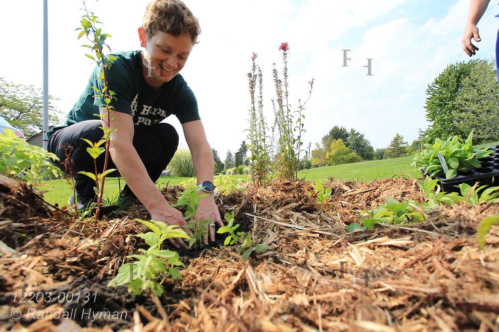 Huron Pines community program director Abby Ertel plants wildflowers in bioswale of rain garden at River Side Park in Au Gres, Michigan.