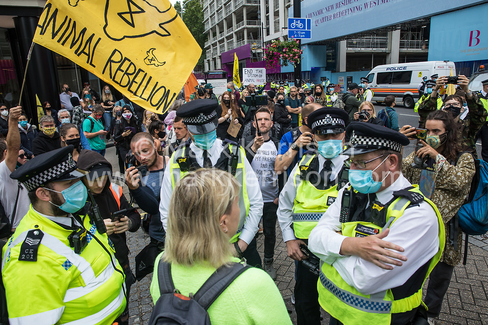 Metropolitan Police officers prepare to arrest an ecologist who made a speech about zoonotic diseases from the side of the road to animal rights activists from Animal Rebellion, including some who had blocked the road outside the Department of Health and Social Care by locking themselves to a pink slaughterhouse truck, on 3 September 2020 in London, United Kingdom. Animal Rebellion activists are protesting in solidarity with victims of the global food system and to demand that the UK transitions to a sustainable plant-based food system.