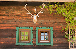 Window with deer antler, Salzburger Land, Austria