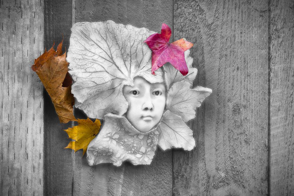 """Pensive Contemplation"", garden sculpture and autumn leaves, November, private residence, Tacoma, Washington, USA"