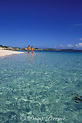 Holmes Cay,<br /> Berry Islands, <br /> Bahamas ( Western Atlantic Ocean ) MR 114 MR 115