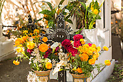 Flowers decorate a Zapotec indigenous cemetery at the start of the Day of the Dead festival known in spanish as Día de Muertos October 30, 2014 in Teotitlan, Mexico.