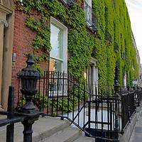 Europe, Ireland, Dublin. Ivy growing on brick building of Dublin neighborhood.