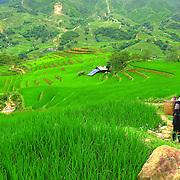 Young Black Hmong girl close to rice fields at Sa Pa