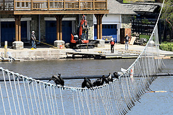 Birds sit on a wire across the Schuylkill River, as workers in the background mount new decks at Boathouse Row in Philadelphia, PA, on April 28, 2020.