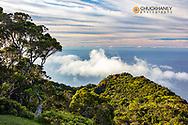 The Napali Coast Wilderness at Kalalau Lookout in Kokee State Park in Kauai, Hawaii, USA