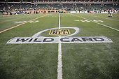 2016 Steelers at Bengals AFC Wild Card