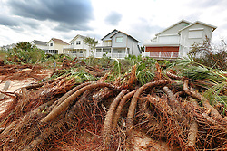 October 8, 2016 - Flagler Beach, FL, USA - Uprooted palm trees are stacked on the beach in front of homes in Flagler Beach, Fla., on Saturday, Oct. 8, 2016, after Hurricane Matthew devastated the area. (Credit Image: © Stephen M. Dowell/TNS via ZUMA Wire)