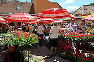 Dolac Flower Market [ Tr?nica Dolac ] , Zagreb, Croatia .<br /> <br /> Visit our CROATIA HISTORIC SITES PHOTO COLLECTIONS for more photos to download or buy as wall art prints https://funkystock.photoshelter.com/gallery-collection/Pictures-Images-of-Croatia-Photos-of-Croatian-Historic-Landmark-Sites/C0000cY_V8uDo_ls