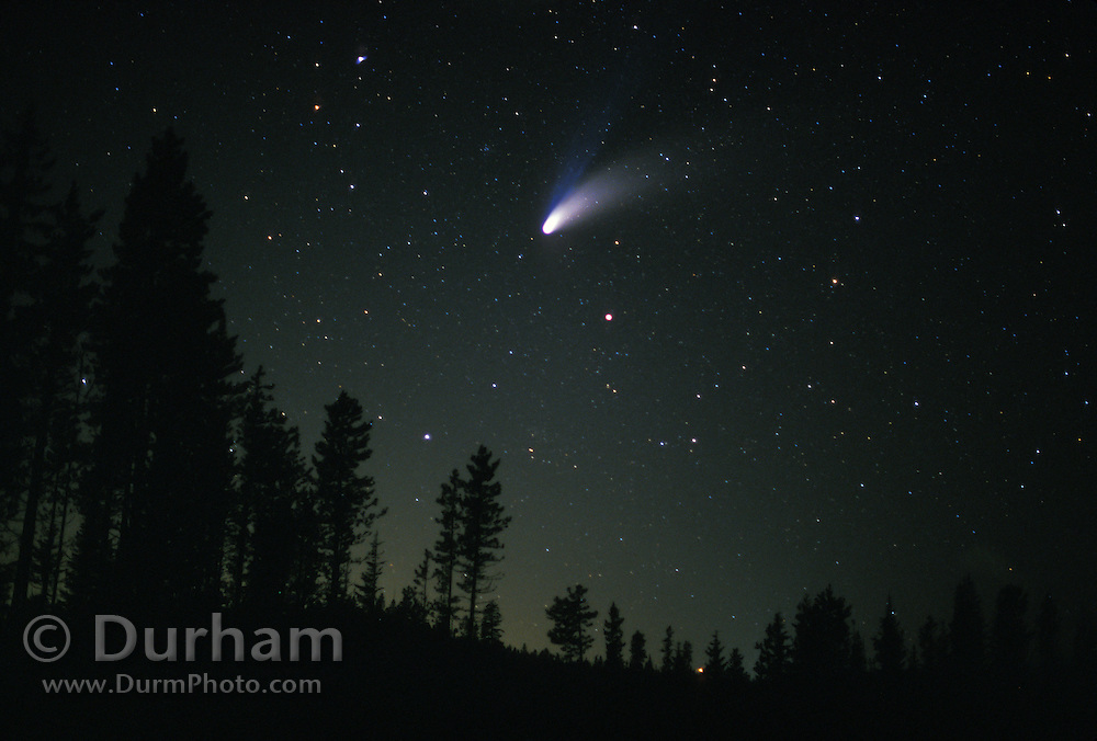 Comet hale-Bopp in the northern sky. Mount hood National Forest, Oregon. Spring 1997