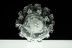 "IN PHOTO: HIV<br /> <br /> Internationally-renowned British artist Luke Jerram has created a coronavirus glass sculpture in tribute to the huge global scientific and medical effort to combat the pandemic.<br /> <br /> Made in glass, at 23cm in diameter, it is 1 million times larger than the actual virus. <br /> <br /> It was commissioned 5 weeks ago by a university in America to reflect its current and future research and learning in health, the environment and intelligent systems, and its focus on solving global challenges.  <br /> <br /> Luke says: ""Helping to communicate the form of the virus to the public, the artwork has been created as an alternative representation to the artificially coloured imagery received through the media. In fact, viruses have no colour as they are smaller than the wavelength of light."" <br /> <br /> ""This artwork is a tribute to the scientists and medical teams who are working collaboratively across the world to try to slow the spread of the virus. It is vital we attempt to slow the spread of coronavirus by working together globally, so our health services can manage this pandemic."" <br /> <br /> Made through a process of scientific glassblowing, the coronavirus model is based on the latest scientific understanding and diagrams of the virus.  <br /> <br /> Profits from this glass model are going to Médecins Sans Frontières (MSF) who will be assisting developing countries deal with the fallout of the coronavirus epidemic. <br /> <br /> This new model is just the latest in Luke's Glass Microbiology series of virus sculptures. Luke and his glassblowing team have, in the past, made other sculptures of viruses from swine flu and Ebola to smallpox and HIV.<br /> <br /> Respected in the scientific community, the glass sculptures have featured in The Lancet, Scientific American, British Medical Journal (BMJ) and on the front cover of Nature Magazine.  <br /> <br /> The Glass Microbiology sculptures are in museum collections around the world, including the Metropolitan Museum, NYC; Wellcome Collection, London and the Museum of Glass, Sh"
