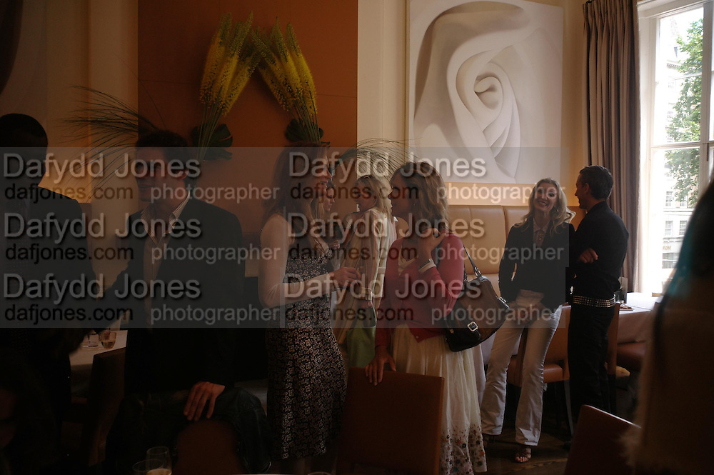 Dominic West, Brooke Shields, Sabrina guinness, Allegra Hicks and Patrick Cox. Lunch party for Brooke Shields hosted by charles finch and Patrick Cox. Mortons. Berkeley Sq. 6 July 2005. ONE TIME USE ONLY - DO NOT ARCHIVE  © Copyright Photograph by Dafydd Jones 66 Stockwell Park Rd. London SW9 0DA Tel 020 7733 0108 www.dafjones.com