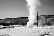 Steam rising in Biscuit Basin in winter, Yellowstone National Park