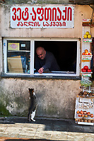 Georgie, Koutaissi, homme nourrissant un chat // Georgia, Kutaisi, man fieding cat