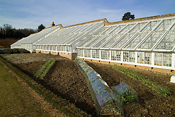 The glasshouse in the kitchen garden at Audley End in winter