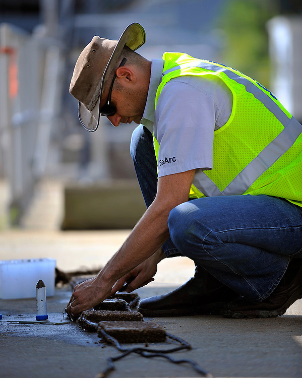 SeArc Ecological Marine Consulting Ido Sella count a organisms on a sample tile of ECOncrete pulled from the Savannah River on container berth one after a six-month soak Saturday, Aug 18, 2012 at the Georgia Ports Authority's Port of Savannah in Savannah, Ga. (Stephen Morton for The Georgia Ports Authority).