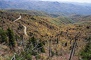 See impressive views of the Blue Ridge Mountains from the top of Waterrock Knob Trail. Fall leaves turn yellow, orange, and red in mid October. Start walking from the scenic National Park Visitor Center at Waterrock Knob, at Blue Ridge Parkway Milepost 451 in North Carolina, USA. Hike breathlessly 1.2 miles round trip with 400 feet gain to the summit of Waterrock Knob (elevation 6292 feet), the highest peak of the Plott Balsam Range, which is part of the Blue Ridge Mountains, a subset of the Appalachians. Local trees release hydrocarbons into the atmosphere and create a characteristic blue haze on pristine days as seen in this photo; but more often a white or gray haze obscures distant views due to air pollution. The 469-mile Blue Ridge Parkway connects Shenandoah National Park (in Virginia) with Great Smoky Mountains National Park in North Carolina, following ridge crestlines and the Appalachian Trail.