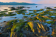 Sunset on shoreline of Gulf of St. Lawrence<br /> Iles-aux-Coudres<br /> Quebec<br /> Canada