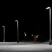 Lights in the parking lot of the Recreation Centre in Kenora, Ontario, Canada on 15 December 2016 as a group of friends from the Ochiichagwe'Babigo'Ining Ojibway Nation reserve (also known as the Dalles First Nation) gathered to play ice hockey on the indoor rink.