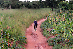 A villager rides up near sunset saying that he had just seen a lion down the path but after some investigation, it was probably made up or a spirit lion.Am iVitale