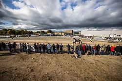 Übersicht, Pflastermusterung<br /> Impression am Rande<br /> Pflastermusterung der Hengste auf der Dreiecksbahn<br /> Neumünster - 58. Int. Trakehner Hengstmarkt 2020<br /> 15. Oktober 2020<br /> © www.sportfotos-lafrentz.de/Stefan Lafrentz