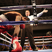 Michael Ramos celebrates after knocking down Anthony Arvelo during a Telemundo boxing match at the Kissimmee Civic Center on Friday, July 17, 2015 in Kissimmee, Florida.  Ramos won the bout. (AP Photo/Alex Menendez)