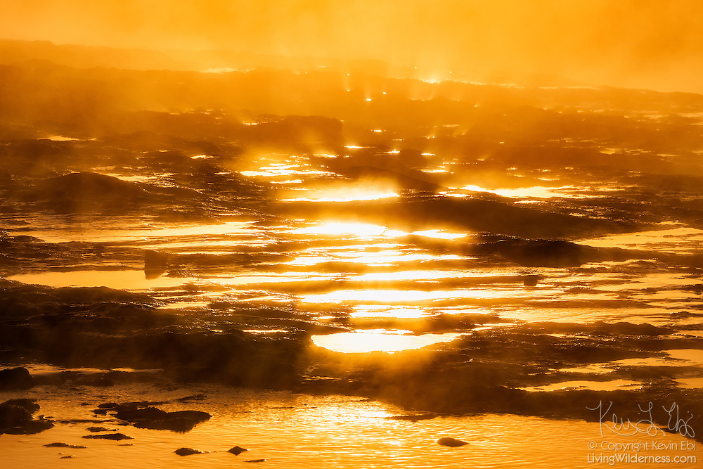 The golden light of sunrise shines on pools of water on the volcanic terrace below Strokkur, one of Iceland's most famous geysers.